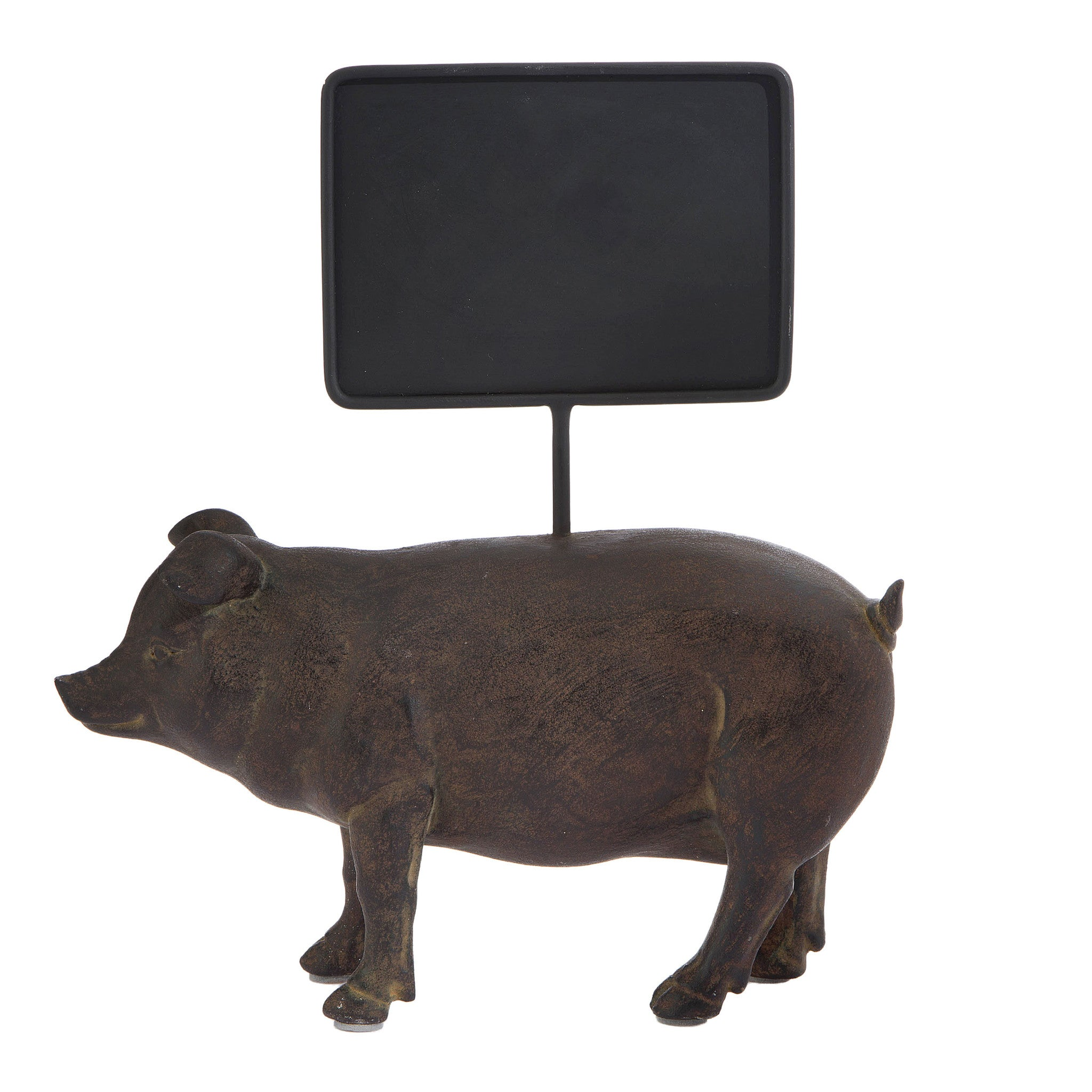 Pig with chalkboard sign!
