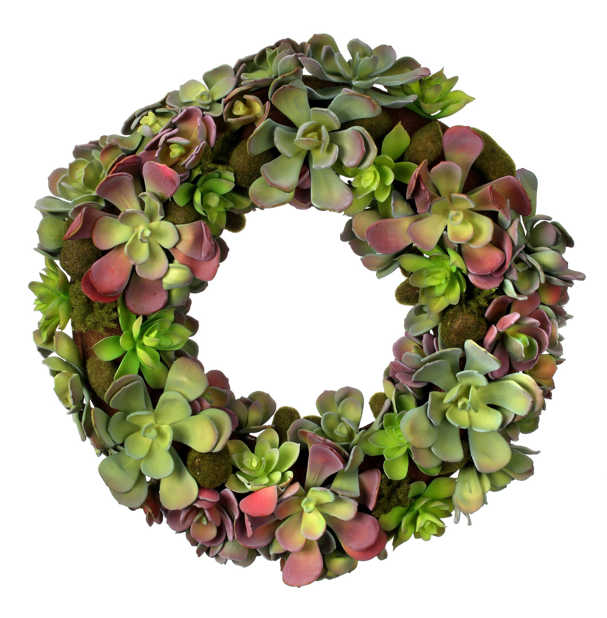 "16"" Plastic Mixed Succulent Wreath!"