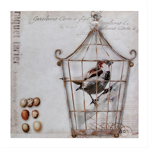 Canvas & Metal Birdcage Prints