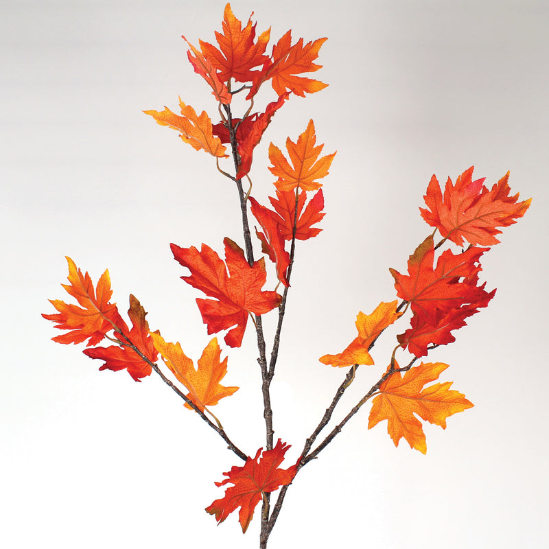 Maple Leaf Branch