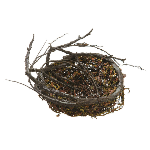 "Beautiful 6"" Bird's Nest!"