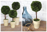 Beautifully Styled Boxwood Ball Décor in 3 Sizes!