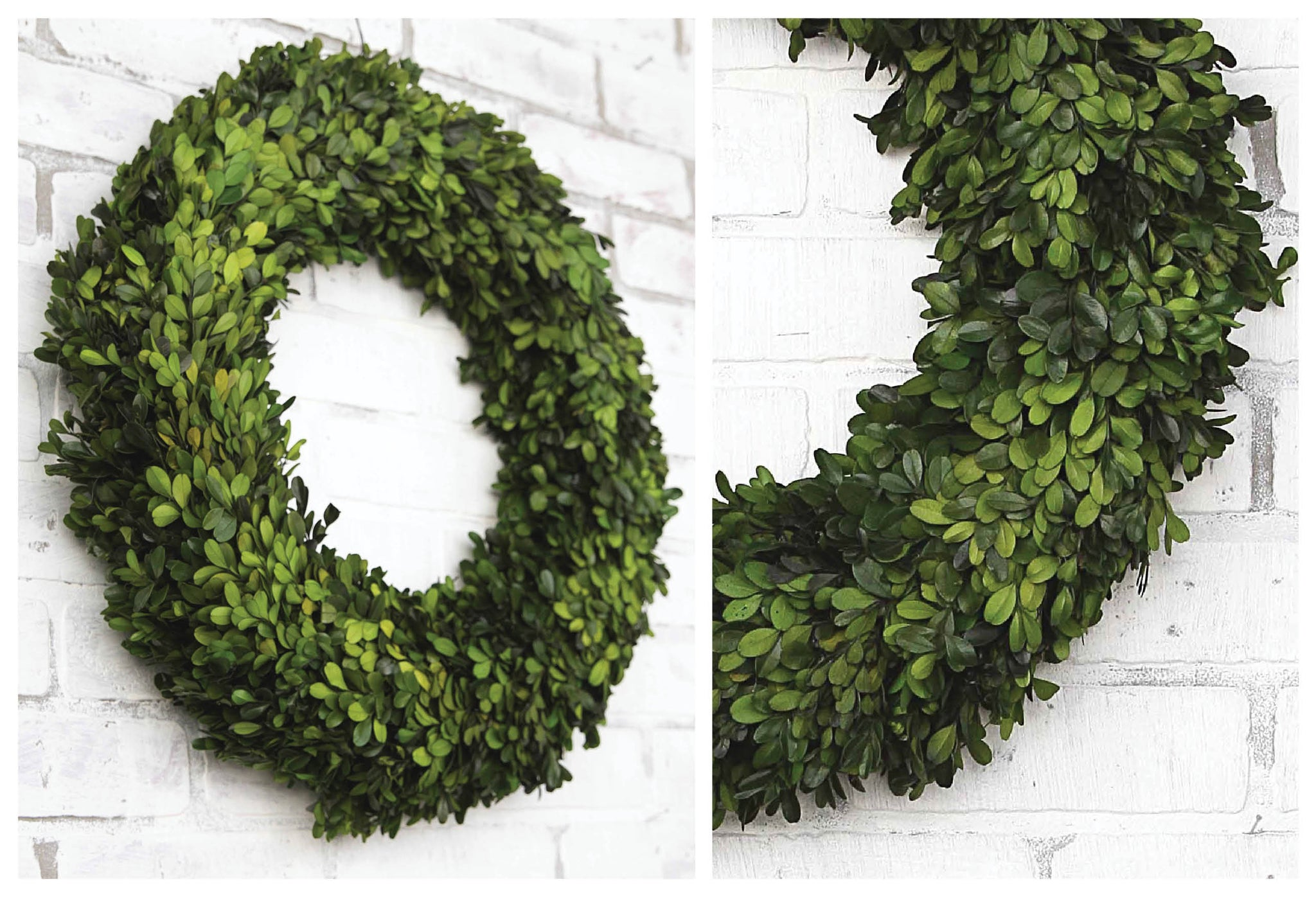 BOXWOOD Wreaths For The Year Round!