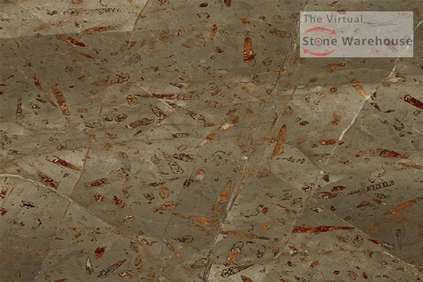 JURASSIC BROWN MARBLE