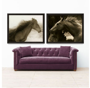 Hyden Horses: Ghost Art Print - Lavender Fields