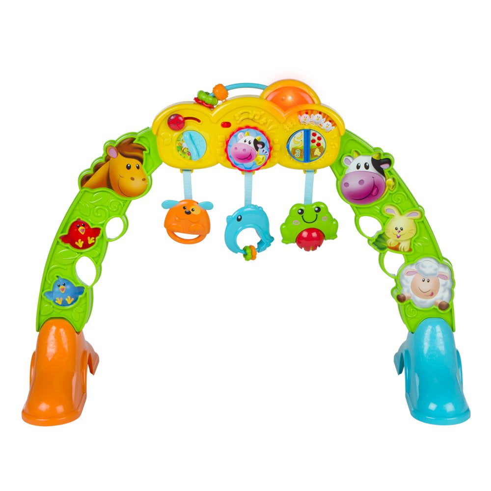 Winfun Brnyard Pals Ply Gym 3In1