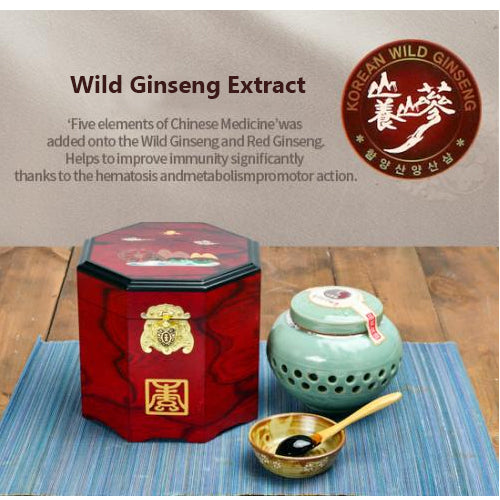 Wild Ginseng Extract 500g