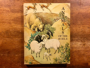Animals of the Bible by Dorothy P. Lathrop, Vintage 1965, Hardcover Book with Dust Jacket