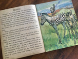 Animal-Book by Klara E Knecht, Paintings by Diana Thorne, Vintage 1933