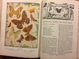 Our Wonder World, A Library of Knowledge: The Nature Book (Volume 3), Vintage 1930, Hardcover Book, Illustrated