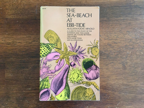 The Sea-Beach at Ebb-Tide by Augusta Foote Arnold, Vintage 1968