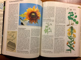 Reader's Digest ABC's of Nature: A Family Answer Book, Vintage 1989, Hardcover Book with Dust Jacket, Illustrated