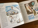 The Great Book of Birds, Illustrated Guide to 600 Species and Their Environments