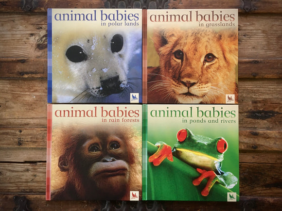 Animal Babies in Ponds and Rivers, Grasslands, Rain Forests, Polar Lands, HC