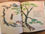 Where the Wild Apples Grow, Written and Illustrated by John Hawkinson, Vintage 1967, Hardcover Book