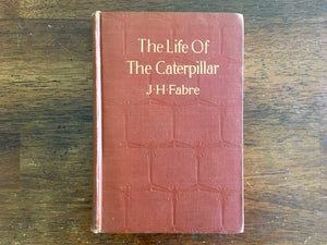 The Life of the Caterpillar by Jean Henri Fabre, Antique 1916, Hardcover Book