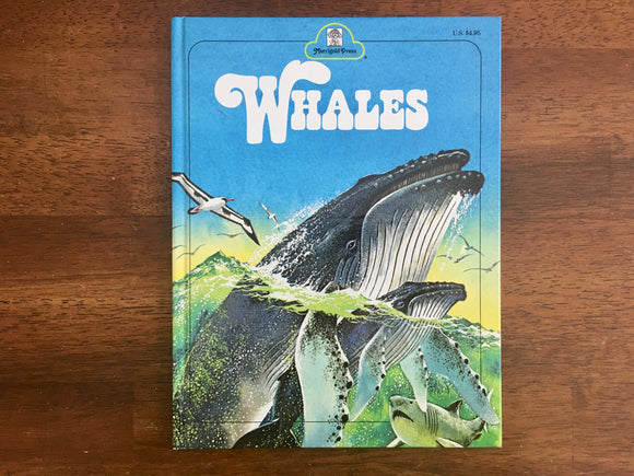 Whales by Jane Werner Watson, Illustrated by Rod Ruth, Vintage 1978