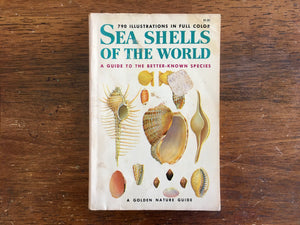 Sea Shells of the World, Golden Nature Guide, PB, Vintage 1962