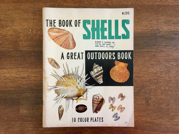 The Book of Shells: Great Outdoors by Lula Seikman, Illustrated by Elsie Malone