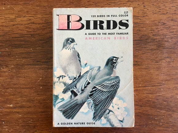 Birds: A Golden Nature Guide to the Most Familiar American Birds, Vintage 1956