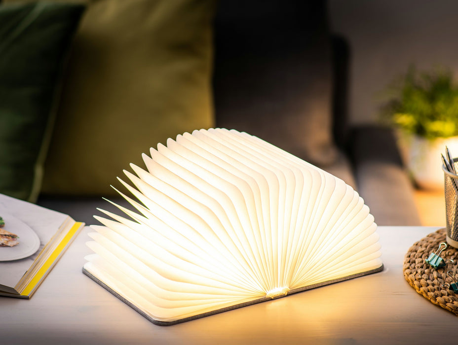 Gingko LED Smart Book Desk Light, Natural Leather Effect Finish, Various Colours