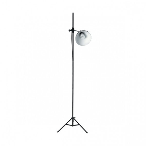 The Daylight Company 32W CFL Artist Studio Lamp With Stand, E27 (Edison Screw)