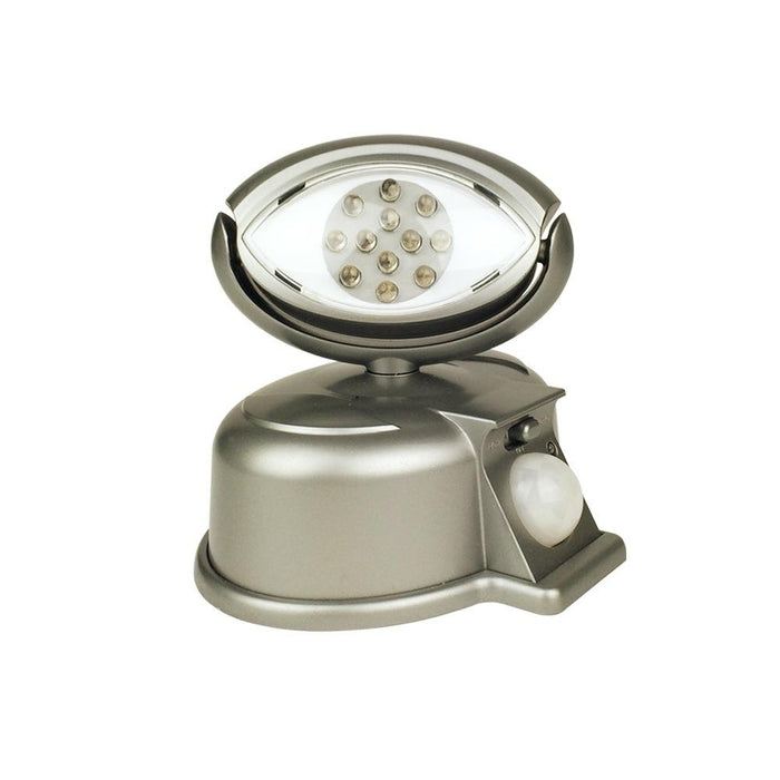 NiteSafe LED Eye Light, Motion Activated Floodlight - Silver