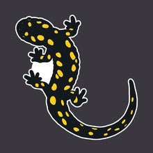 Load image into Gallery viewer, spotted salamander sticker detail