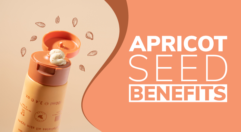 Apricot Seed Benefits