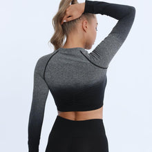 Load image into Gallery viewer, NEW Ombre Long Sleeve Seamless Cropped Top