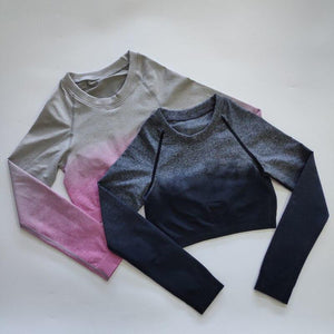 NEW Ombre Long Sleeve Seamless Cropped Top
