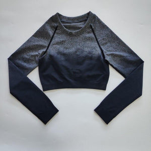 NEW Ombre Long Sleeve Cropped Top