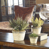 Uttermost La Costa Greenery Set Of Three - K&R Interiors
