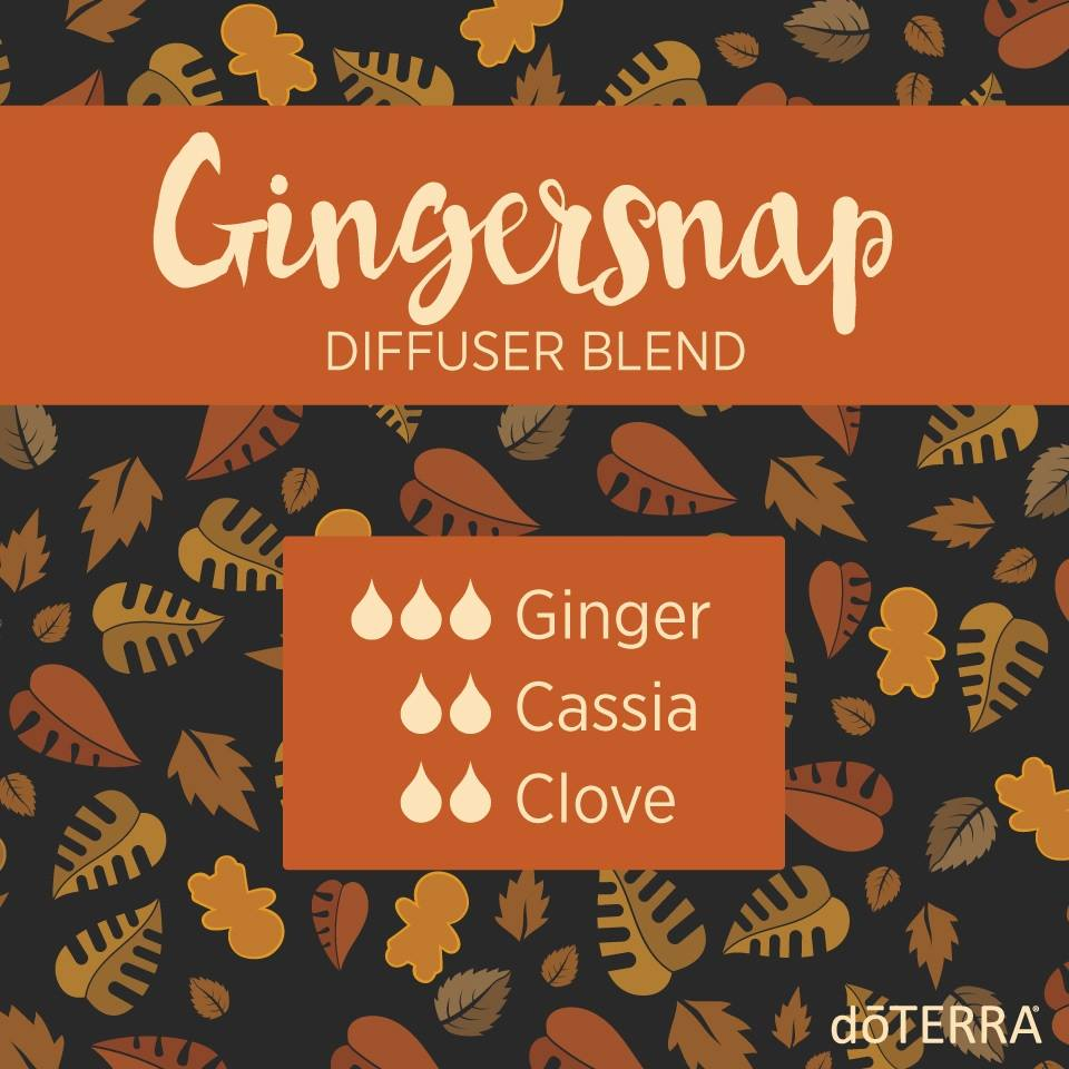 Gingersnap Diffuser Blend with dōTERRA Oils
