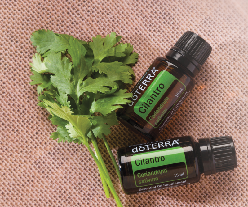 dōTERRA Cilantro Essential Oil - 15ml
