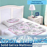 90*9Scm Summer Trumpet Solid Gel Ice Pad Cooling Artifact Bedding Cooling Mattress Sleeping Pad Ice Pillow - 88digital