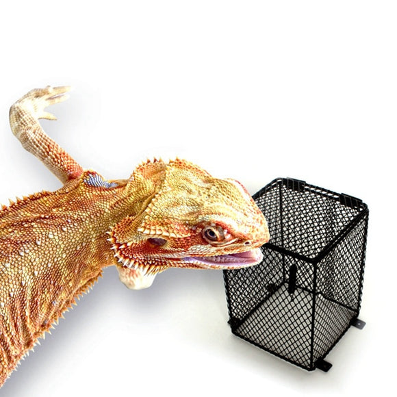 New Reptile Heater Guard Heating Bulb Lamp Enclosure Cage Protector Metal Mesh Lamp Cover Lampshade Temperature Control Product USA
