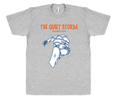 QUIET STORM - ONE RUN SPORTS