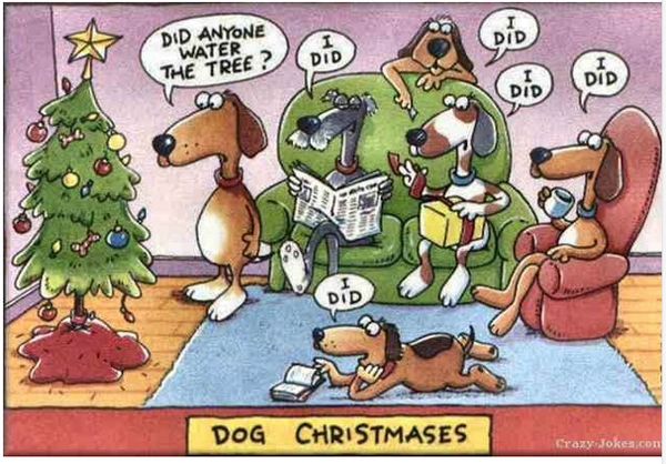 Humor: Dogs and Christmas