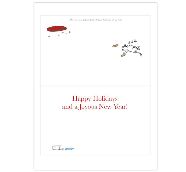 Christmas Cards: Joy and good cheer!  (12)