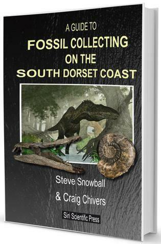 A Guide to Fossil Collecting on the South Dorset Coast fossil hunting guide