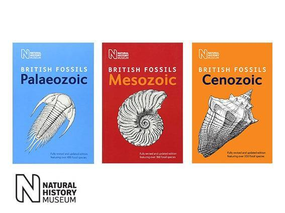 Fossil Identification guides natural history museum british mesozoic fossils british palaeozoic fossil british cenozoic fossils 3 pack