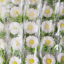 Load image into Gallery viewer, Daisy Soap