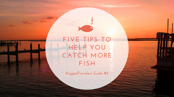 Five Tips To Catch More Fish