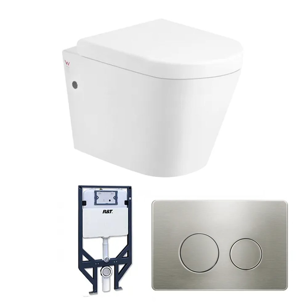 ALZANO Wall Hung Toilet with Cistern and Frame