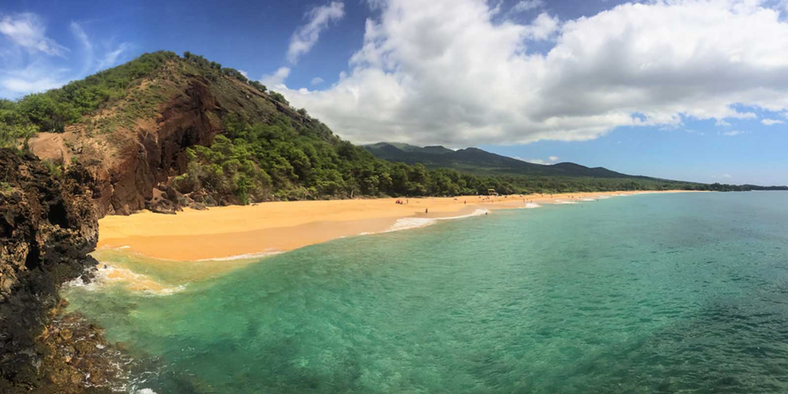 Exploring the Ocean and Marine Life of Maui Hawaii With