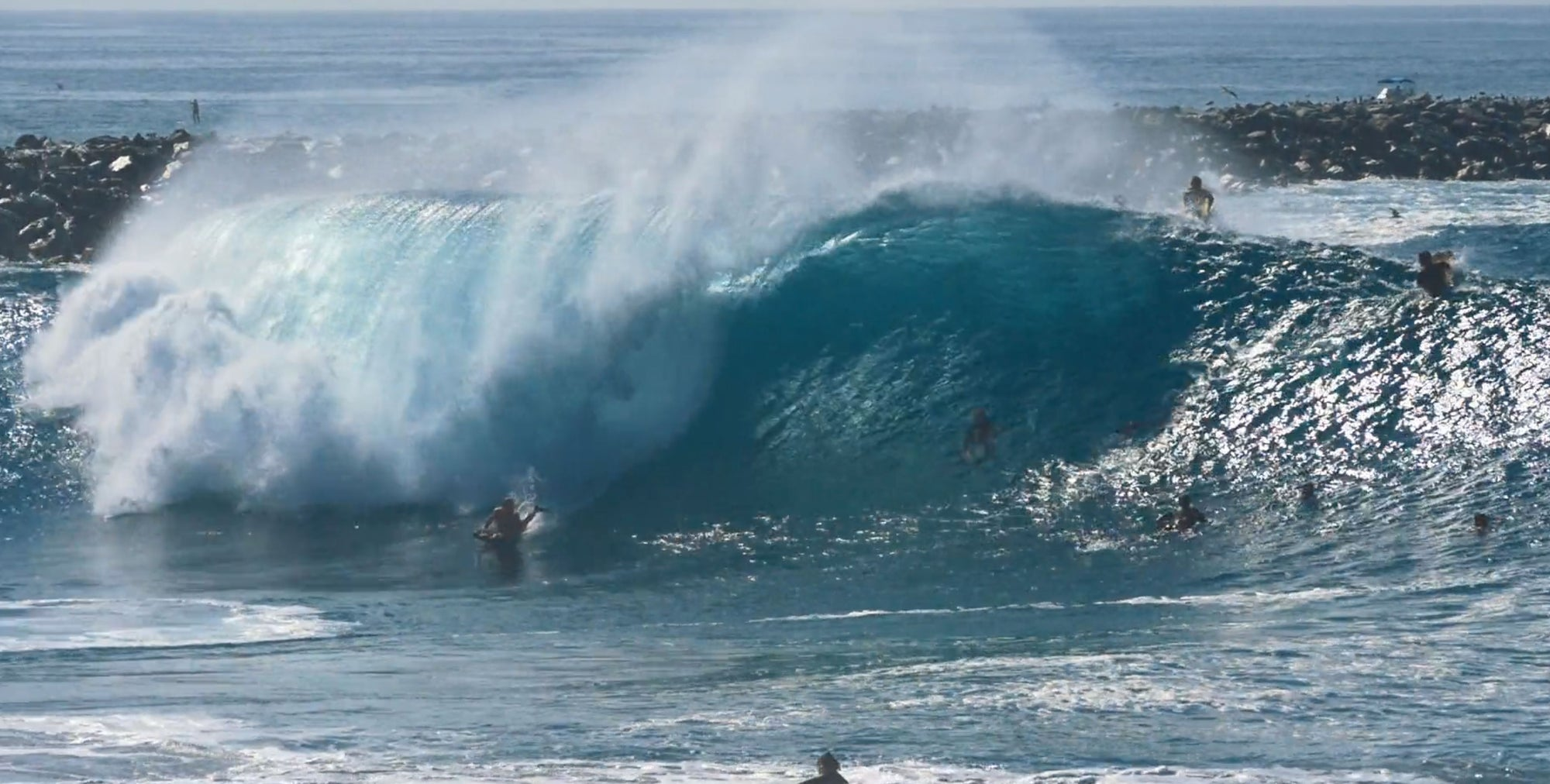 Labor Day Pacific Grade Carnage at the Wedge