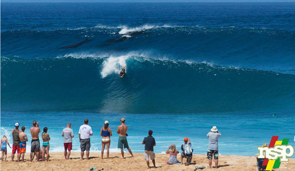 Humpback Whales Pipeline bodysurfing