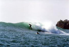 UC San Diego best surf colleges.