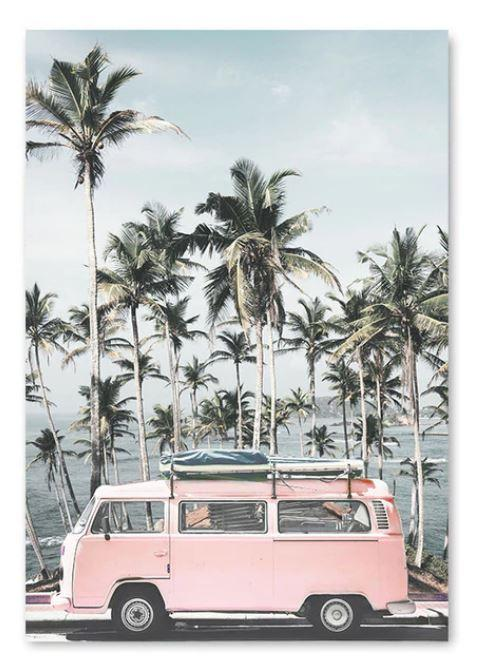 Dream away driving the pink bus along the waterfront ♥